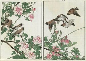 1892 Orig Japanese Diptych Woodblock Print Keinen Bird Flower Sparrows