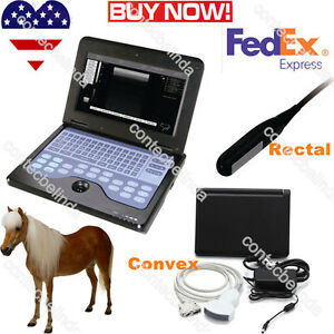 Vet Veterinary Ultrasound Scanner Laptop Machine rectal Linear convex Probe Usa