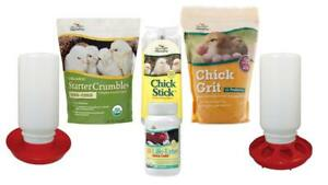 Manna Pro Chick Starter Kit Organic food Supplements Treat Feeder And
