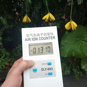 Mini Negative Concentration Detector Checker Air Ion Tester Meter Counter Usa