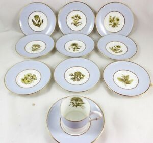 10 Sets Cup Saucer Royal Worcester China Z2091 Ah Williamson Blue Gold Flowers