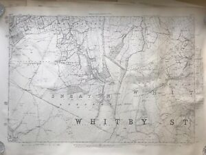 Geological Survey Map 1877 North Yorkshire Sneaton Sheet No 46 41 X 29 Reprint