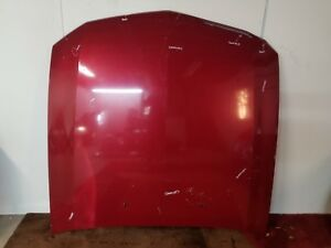 2005 2006 2007 2008 2009 Ford Mustang Hood Bonnet Used 05 06 07 08 09