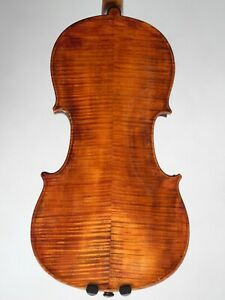 Old Violin 4 4 Labelled Antonius Comuni 1823