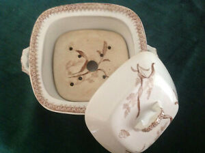 T R Boote Summertime England Brown Transferware Ironstone Butter Dish Rare