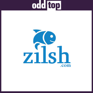 Zilsh com Premium Domain Name For Sale Namesilo