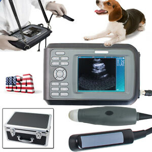 Ultrasound Scanner W Mechanical Sector Rectal Probe For Veterinary Hospital