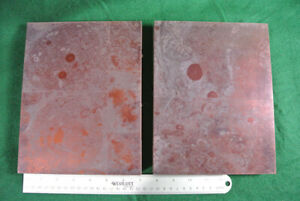2 Large Printing Letterpress Printers Block 9 X 7 Microscopic Cells Rare