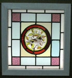 Victorian English Leaded Stained Glass Window Lovely Hand Painted Bird 17 X 18