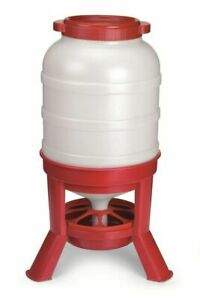 Little Giant Domefdr60 Plastic 60 Lb Capacity Dome Poultry Feeder
