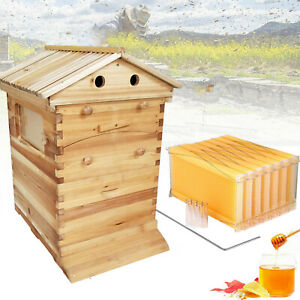 7pcs Auto Bee Hives Honey Beekeeping Box Beehive Comb Bee Hive Frames bee House