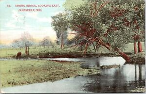 Janesville Wisconsin spring Brook Looking East cow At Edge Of Creek 1908 Pc