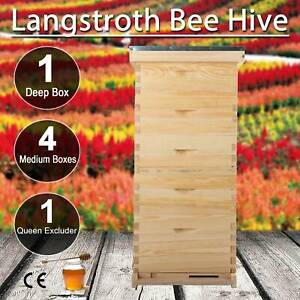 Beehive Hive Bee Hive Frames 10 Frame 4 Medium Box 1 Deep Box W Queen Excluder