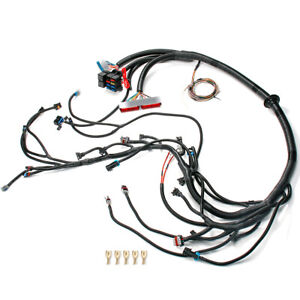 Standalone Wiring Harness For 97 06 Dbc Ls1 T56 Or Non electric Tran 4 8 5 3 6 0