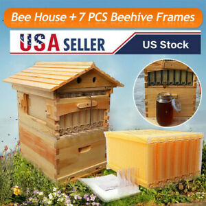 Unique Beekeeping Wooden House Box Automatic Honey 7pcs Beehive Frames Kit