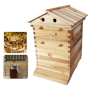 7pcs Deluxe Bee Hive Starter Kit Beehive Wooden Box W Accessories Set Manual Us