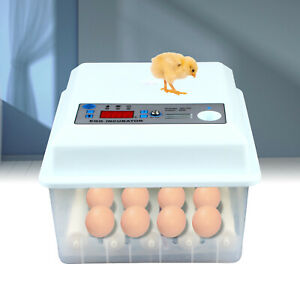 16egg Incubator Digital Clear Hatcher With Auto Turner Duck Bird Chicken Poultry