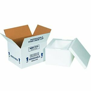 Boxes Fast Bf204c Insulated Shipping Box With Foam Container 8 X 6 X 4 1 4