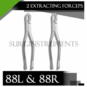 10 Extracting Forceps Dental Surgical Instruments 88r 88l