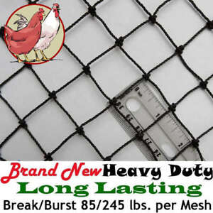 Poultry Netting 50 X 100 Heavy Knotted 1 Mesh Aviary Bird Net Long Lasting