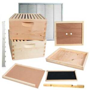 Double Deep Brood Box Beginners Beehive Kit 20 Each Pine Frames Gl2stack