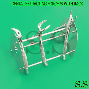 3 Stainless Steel Dental Extracting Extraction Forceps with Rack