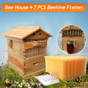 7 Pcs Beehive Auto Honey Hive Frames Wooden Beekeeping Bee Brood House