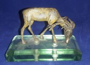 Antique Austrian Vienna Cold Painted Bronze Figure Of Grazing Deer Buck