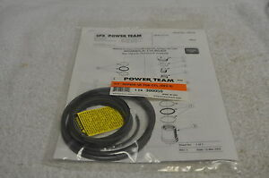 Spx Power Team 300059 50 Ton Hollow Ram Rh503 Repair Kit