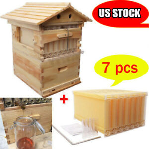 7pcs Auto Pour Honey Bee Hive Frames Beekeeping Beehive Brood House Box
