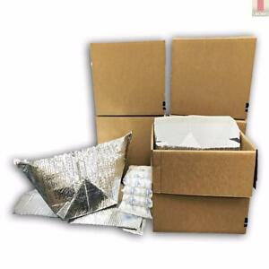 Refrigerator Moving Kit 5 Boxes Insulated Totes With 10 Gel Packs