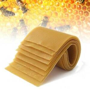 30 Honeycomb Wax Frames Beekeeping Foundation Honey Hive Equipment Bee Supplies
