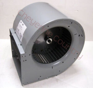 Squirrel Cage Exhaust Fan Blower Ventilation Exhaust Without Motor
