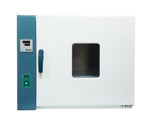 220v Digital Forced Air Convection Drying Oven 101 2ab Rt 10 300