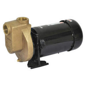 Dayton Self Priming Pump 2 Hp bronze 2zxr7
