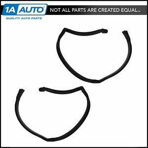 Roofrail Weatherstrip Pair Set Of 2 For 78 81 Pontiac Grand Am 2dr