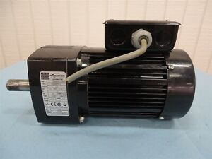 Bodine Electric Motor 42r6bfpp f2 Gear Motor 3 8hp 170rpm 230vac 1 9a 115lb in