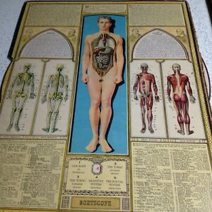 Antique Bodyscope Anatomy Medical Display W Slip Cover Dial Mechanical Segal