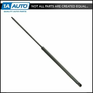 Tailgate Hatch Lift Support Strut Gas Charged Shock For 92 05 Chevy Safari