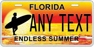 Florida State Any Text Personalized Custom License Plate Tag For Auto Car Atv