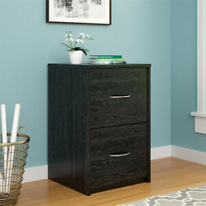 File Cabinet 2 Drawer Spacious Home Office Decorative Handles