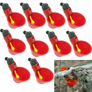 50pcs Feed Automatic Bird Coop Poultry Chicken Fowl Drinker Water Drinking Cups