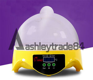 7 Egg Micro Incubator Home Chicken Duck Bird Hatch Tool Mini Automatic Digital