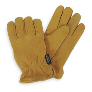 Cold Protection Gloves l golden Ylw pr Pk 12 4tjw8