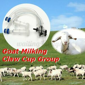 Goat Sheep Milker Machine Parts Milker Claw Milking Liners Goat Milking Usa