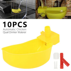 10pcs Poultry Water Drinking Cups Quail Hen Waterer Automatic Drinker Plastic