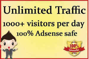 You Will Receive 1500 Daily Visits For 3 Days Real Visitors To Your Website