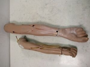 Lot Of 2 Medical Nursing Training Manikin Arms 1 Adult 1 Child Trainers
