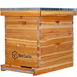 10 Frame Complete Beehive Kit Including Frame And Beeswax Coated Base Plate