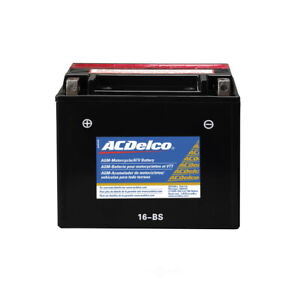 Battery Acdelco Pro Atx16bs